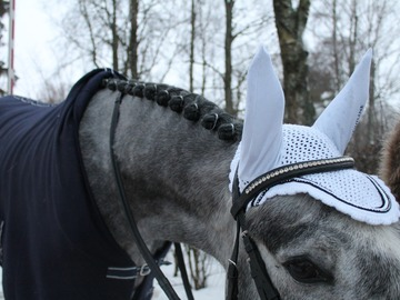Selling: Equiline Rio valged kõrvad